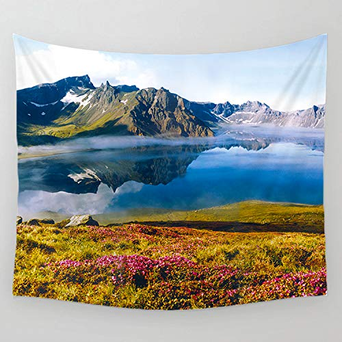 FELENIW Grassland Wildflower Lake Mountain Blue Sky Reflection Landscape Natural Tapestry Wall Hanging Tapestry Blanket Decorate Home Table Bedroom Living Room (60x60 inches)
