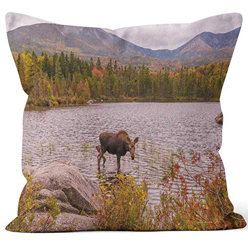 Nine City Moose at Sandy Stream Pond Home Decorative Throw Pillow Cover,HD Printing Square Pillow case