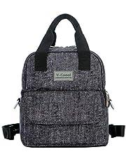 V-CoooL Insulated Breastmilk Cooler Bag (6 Breastmilk Bottles + 2 Ice Pack) Leakproof Breast Milk Bottle for Travel Double Layer Bag for Nursing Mom back to Work(Gray)