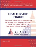 Health Care Fraud: Types of Providers Involved in Medicare, Medicaid, and the Children's Health Insurance Program Cases, Government Accountability Government Accountability Office, 1493520040