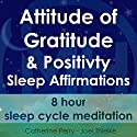 Attitude of Gratitude and Positivity, Sleep Affirmations: 8 Hour Sleep Cycle Meditation Speech by Joel Thielke, Catherine Perry Narrated by Catherine Perry