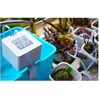 Amazon Com Plant Self Watering System Automatic Waterer