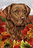 Chesapeake Bay Retriever – Tamara Burnett Fall Leaves Large Flags Review