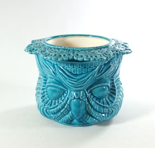 large african violet pots - 8