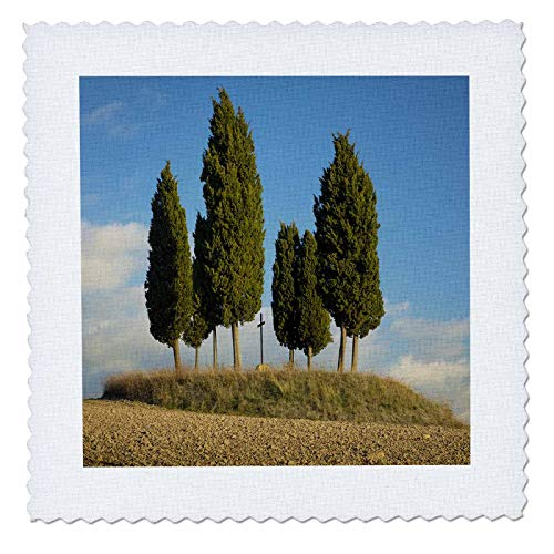 3dRose Danita Delimont - Tuscany - Tree circle and memorial cross on hill, Tuscany, Italy - 20x20 inch quilt square (qs_313694_8)