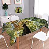 Tree Oblong Printed Tablecloth Ancient Forest in Autumn Green Nature Deciduous Foliage Growth Eco Flannel Tablecloth Light Green Dark Brown Yellow Size: W60'' x L84''