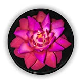 """Thai Express Hand-Carved Soap Flower, 3"""" Scented Soap Carving Gift-Set, Red/purple, Purple/blue, D in a round hand-painted/stamped case (Red/Purple)"""