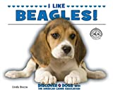 I Like Beagles!, Linda Bozzo, 1464401233