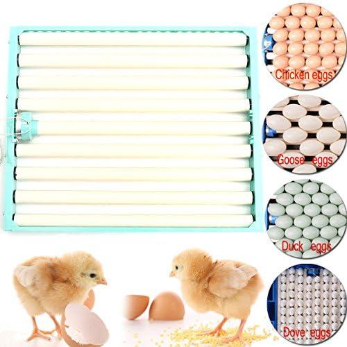 Queenwind 220V 鶏卵インキュベーター自動アヒルウズラ鳥家禽卵インキュベータートレー