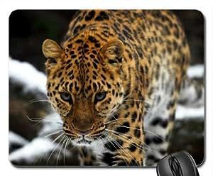 Amur leopard Mouse Pad, Mousepad