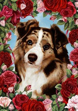 Australian Shepherd Red - Tamara Burnett Valentine Roses Garden - Garden Australian Shepherd