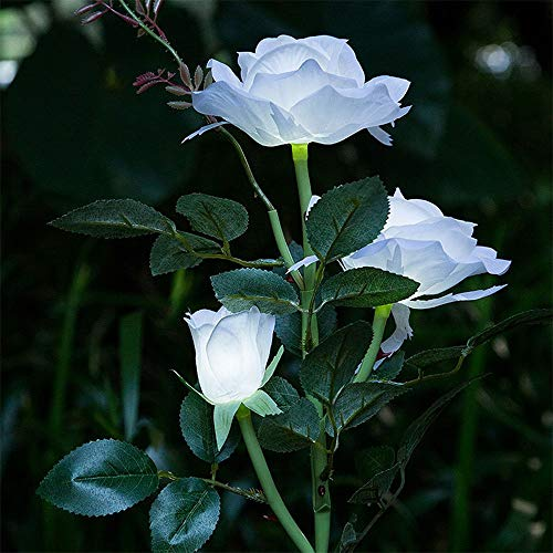 White Rose Waterproof Solar Flower Light - 3 Head LED Decorative Outdoor Living Holiday Lawn Lamp for Home Room Garden Backyard Street Decor (Ship from USA) (White)