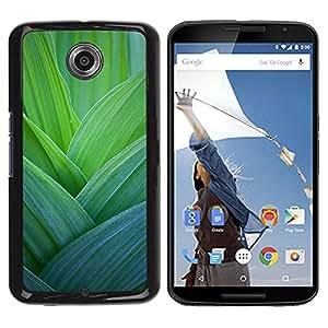 Be Good Phone Accessory // Dura Cáscara cubierta Protectora Caso Carcasa Funda de Protección para Motorola NEXUS 6 / X / Moto X Pro // Leaves Nature Spring Floral