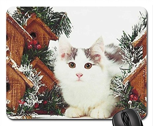 an Palmer A Norwegian forest kitten in winter Mouse Pad 7x9 Inches