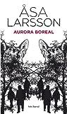 Aurora boreal par Larsson