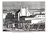 The American Slave Coast: A History of the