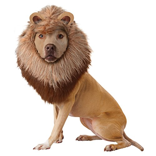 Animal Planet Lion Dog Pet Costume-Dog Extra Small (Lion Dog Costume Animal Planet)