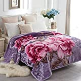 JYK Heavy Korean Mink Fleece Blanket - 2 Ply Reversible 520GSM Silky Soft Plush Warm Blanket for Autumn Winter (Queen, Peony/Peony)