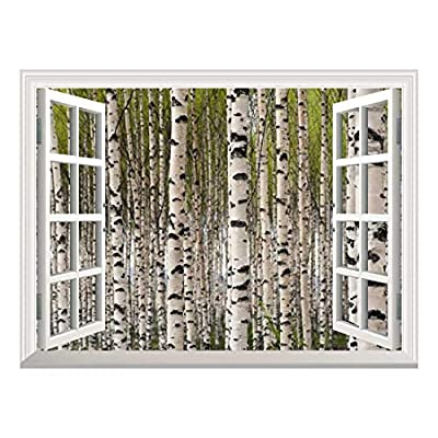 Removable Wall Sticker/Wall Mural - Grove of Birch Trees with Green Leaves in Spring | Creative Window View Home Decor/Wall Decor - 36