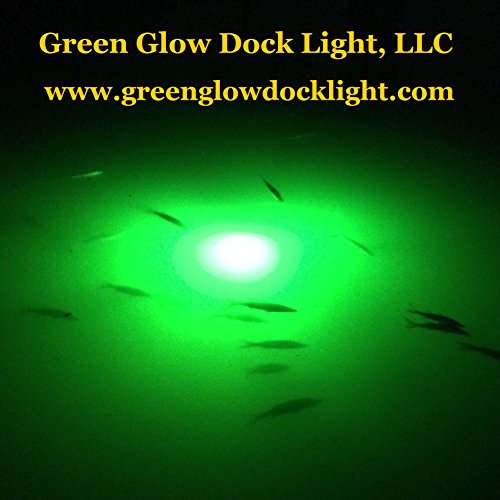 Bright Green Underwater Fishing Lights, Double Lamp Kit with 50' Cords Saltwater or Fresh by Green Glow Dock Light (Image #5)