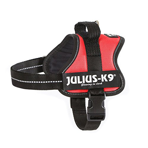 (JULIUS K-9 Powerharness, Size 2, Red)