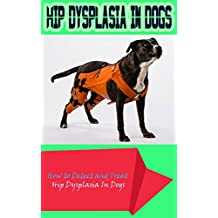 HIP Dysplasia in Dogs: How to Detect and Treat Hip Dysplasia In Dogs