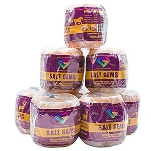 SALT GEMS 7.5 lb Himalayan Animal Salt Lick Pure Natural Pink Salt Block on a Rope for Horses, Deer, Goats, Cattle,Rabbits & Livestock 5