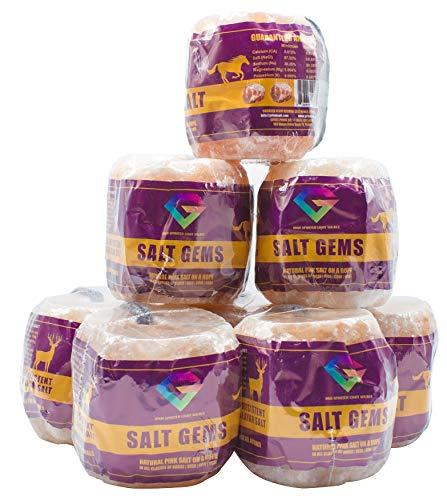 SALT GEMS 8 Pack - 7.5 lbs, Himalayan Animal Salt Lick Pure Natural Pink Salt Block on a Rope for Horses, Deer, Goats, Cattle,Rabbits, Livestock