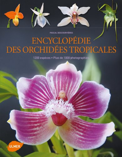 Télécharger Encyclopédie Des Orchidées Tropicales 1200 Espèces