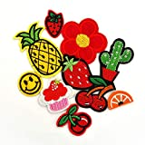 Iron on Embroidered Pineapple Patches Assorted DIY Repair Patches Sew on Decorative Patches for Jeans/Shoes/Shirts/Backpacks/Curtain