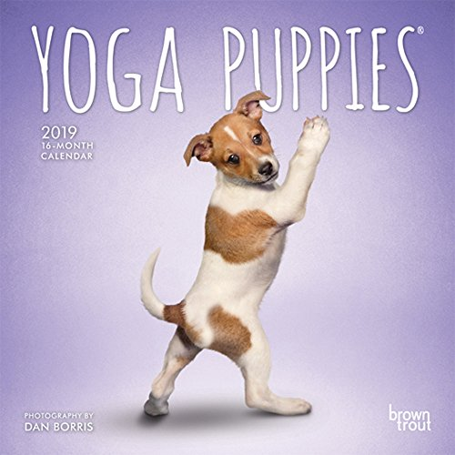 (Yoga Puppies 2019 7 x 7 Inch Monthly Mini Wall Calendar, Animals Humor Puppy (Multilingual Edition))