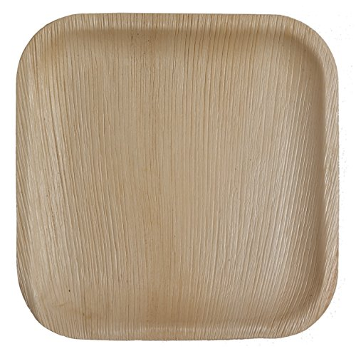 Table To Go 50-Piece Palm Leaf Square Dinner Plates, 10-Inch - Palm Leaf Shade