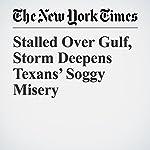 Stalled Over Gulf, Storm Deepens Texans' Soggy Misery | Jack Healy,Richard Pérez Peña,Alan Blinder