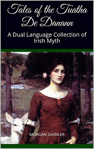 Buy irish language kindle
