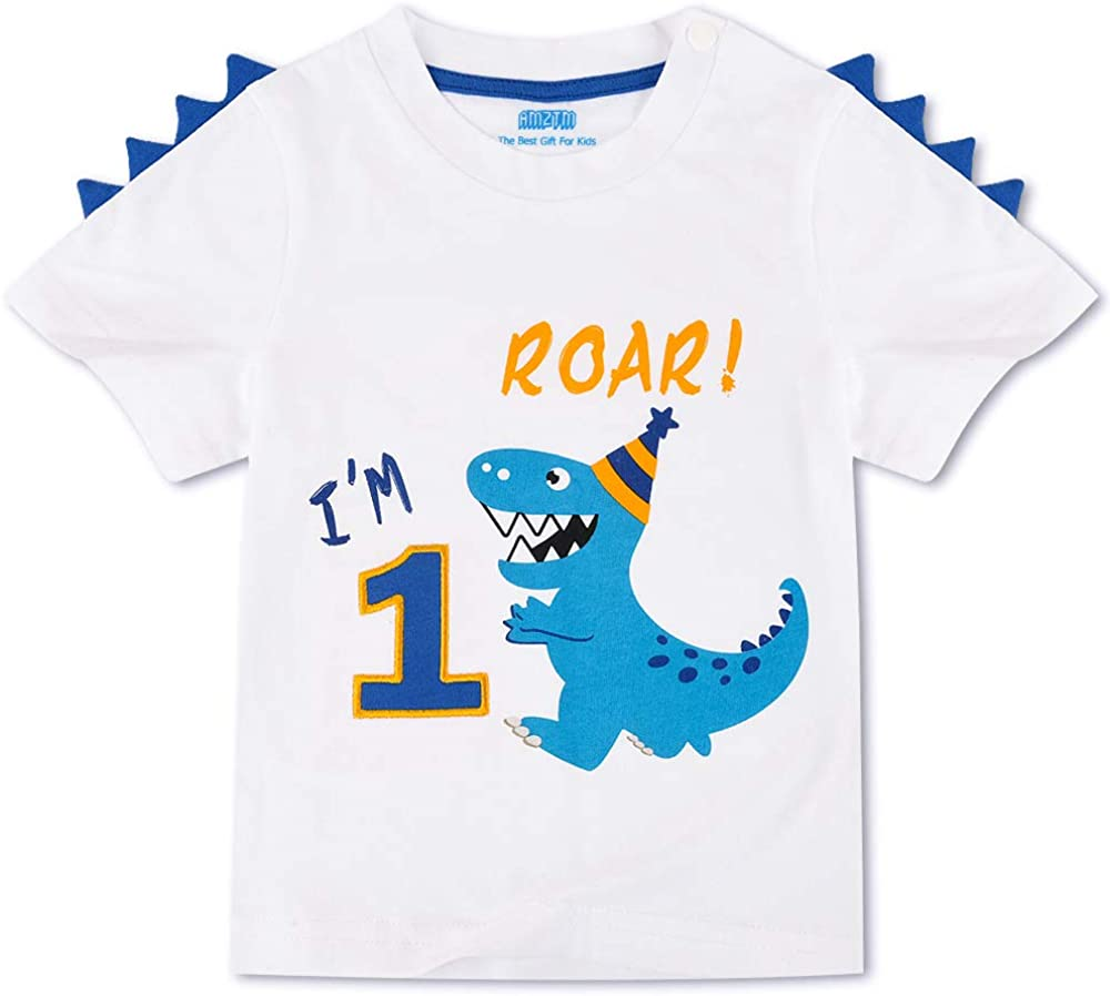AMZTM Dinosaurio Camiseta de Cumpleaños - 1er Cumpleaños Suministros Fiesta