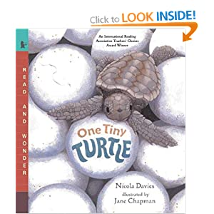 One Tiny Turtle (Children's Picture Books on Video) Jane Chapman
