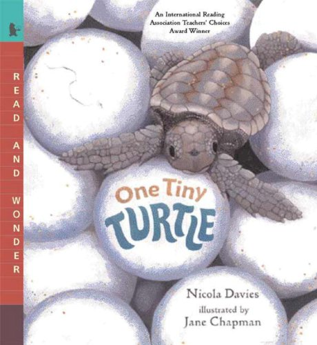 One Tiny Turtle (Turtleback School & Library Binding Edition) (Read and Wonder (Pb)) from Turtleback