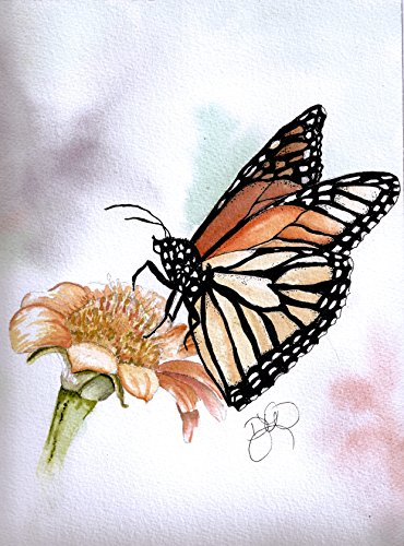 Butterfly Love Blank Note Cards: 6 Blank Artistic Summer Garden Watercolor Butterfly Note Cards, with Envelopes - Joe's Red Monarch