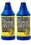 Liquinox 3032 Iron Zinc Chelated Solution, 32-Ounce (2-(Pack))