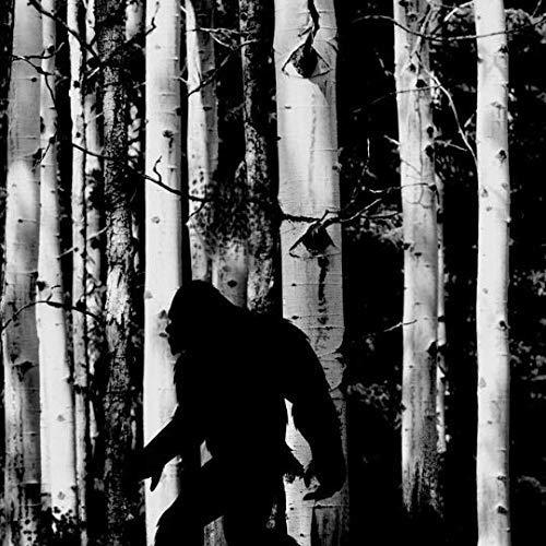 Black Bigfoot T Shirt Camping T Shirt Men/'s//Unisex Sasquatch Shirt Bigfoot in the Forest T-Shirt