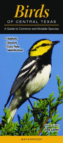 Birds of Central Texas: A Guide to Common & Notable Species (Quick Reference ()