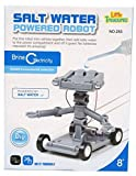 Little Treasures Salt Water Powered Robot Toy Kit - Educational Project Set Review