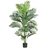Real Looking 7' Paradise Palm - Silk Tree