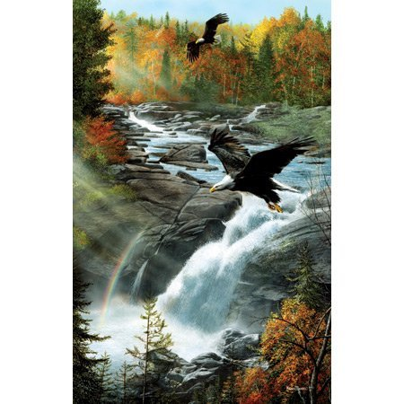 SunsOut Eagles at The Waterfall - 1000 Piece Jigsaw Puzzle Inc. ()