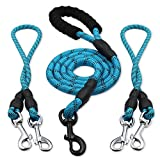 heytech Reflective Dual Dog Leash 2 Dogs, 5 ft Main Rope Two 2 ft Auxiliary Ropes, Double Dog Leash 360° Swivel No Tangle Walking (Blue)
