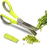 Warmhoming Multipurpose Kitchen Shears with 5 Stainless Steel Blades and Cleaning Comb (Green)