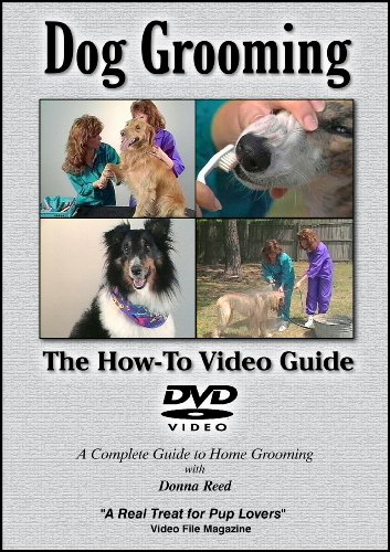 Dog Grooming: The How-To Video Guide