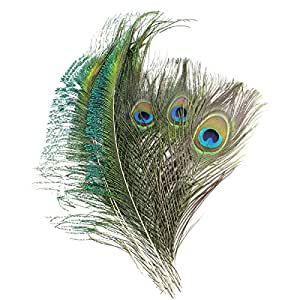 amazon com coceca 40pcs peacock feathers 10 12inch and 20pcs