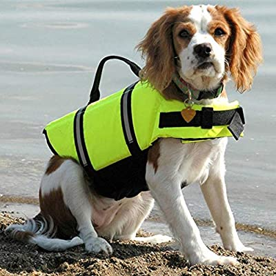 YYCEB Mascota Perro Chaleco Salvavidas Ropa de Seguridad Chaleco ...