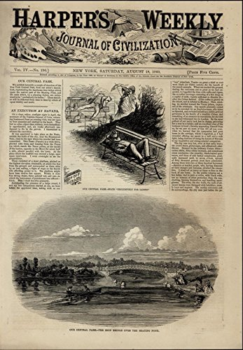 Swan Bench - Central Park Iron Bridge Swans Rowboat Benches 1860 great old print for display